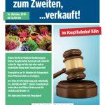 """Pflanzenauktion im Kölner Hautbahnhof zugunsten """"DAT KÖLSCHE HÄTZ"""""""
